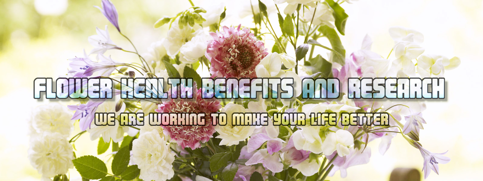 Flower Health Benefits And Research